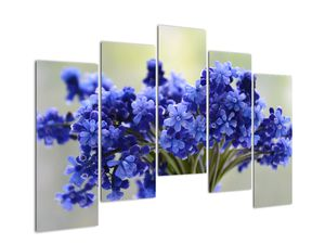 Obraz kytice modrých květů (V020175V12590)