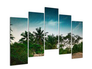 Tablou - palmierii (V020239V12590)