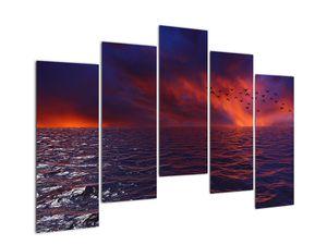 Obraz moře s ptáky (V020351V12590)