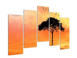 Obraz stromu v západu slunce (V020480V12590)