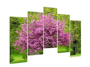 Obraz rozkvetlého stromu na louce (V020654V12590)