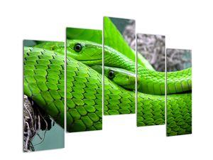 Obraz zelených hadů (V020689V12590)