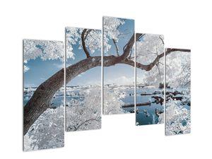 Obraz zasněženého stromu u vody (V020718V12590)