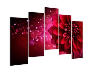 Obraz červené kvety (V020807V12590)