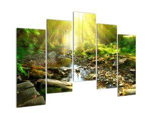 Obraz řeky v zeleném lese (V020942V12590)