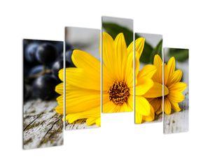 Obraz žluté květiny (V020952V12590)