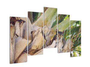 Obraz veverky na stromu (V021177V12590)