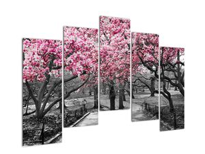 Obraz stromů Magnolíie (V021344V12590)