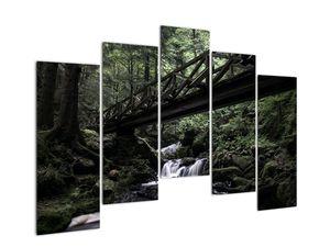 Obraz z černého lesa (V021686V12590)