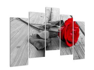 Slika crvene ruže (V022288V12590)