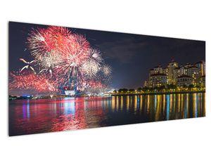 Tablou cu artificii in Singapur (V020035V14558)