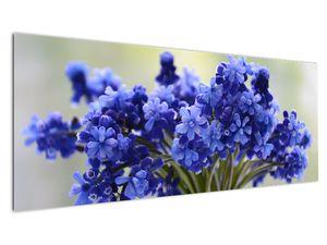 Obraz kytice modrých květů (V020175V14558)