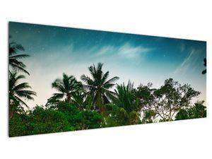 Tablou - palmierii (V020239V14558)