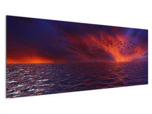 Obraz moře s ptáky (V020351V14558)