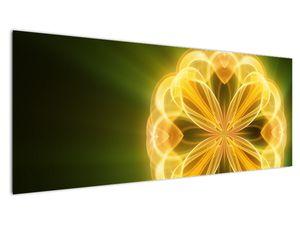 Obraz žluté květiny (V020451V14558)