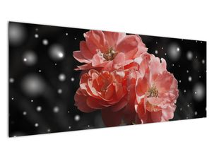Obraz růžové květiny (V020471V14558)