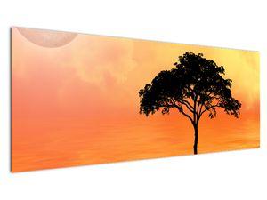 Obraz stromu v západu slunce (V020480V14558)