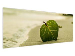 Kép egy levél a homokban (V020485V14558)