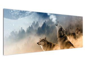 Obraz - vlci vyjící na měsíc (V020509V14558)