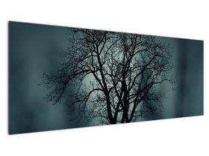 Obraz stromu v zatmění (V020675V14558)