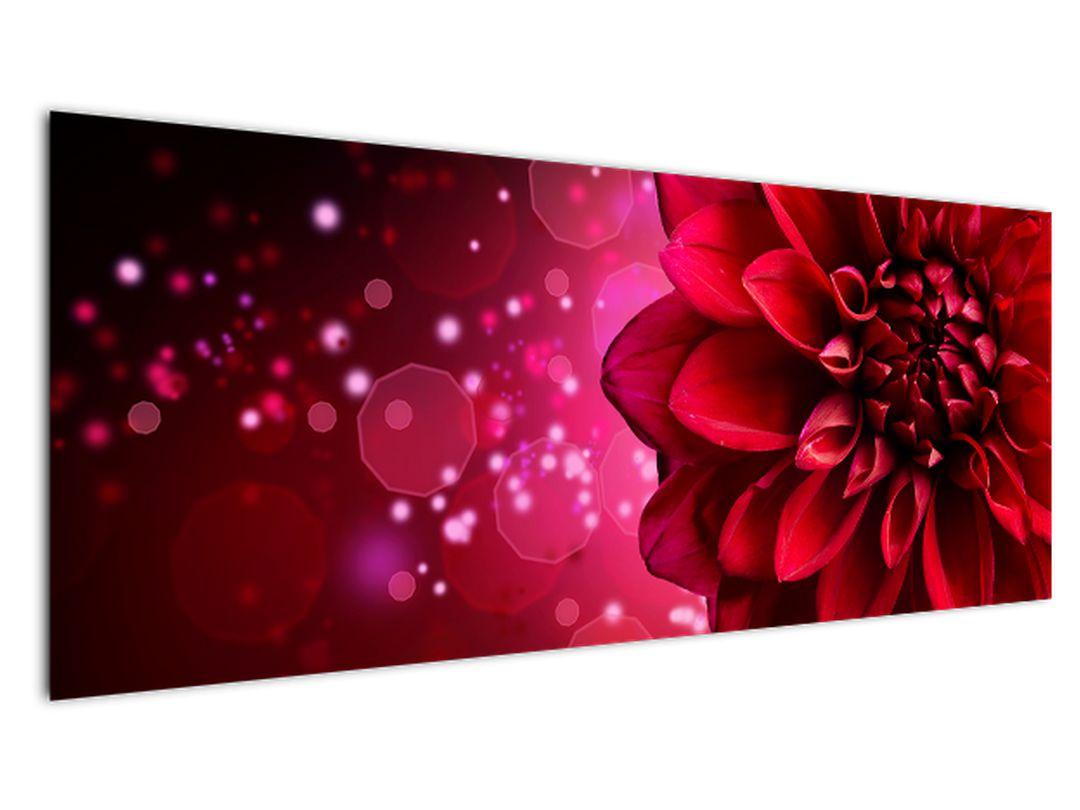 Obraz červené kvety (V020807V14558)