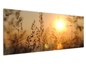 Obraz východu slunce (V020870V14558)