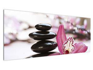 Obraz masážních kamenů a orchidee (V020910V14558)