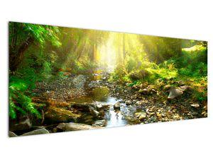 Obraz řeky v zeleném lese (V020942V14558)