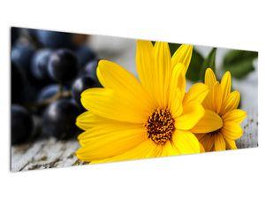 Obraz žluté květiny (V020952V14558)