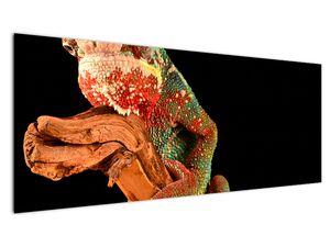 Obraz chameleona na větvi (V021125V14558)