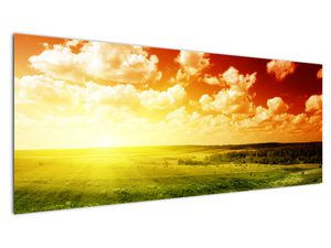 Obraz lúky so žiariacim slnkom (V021174V14558)