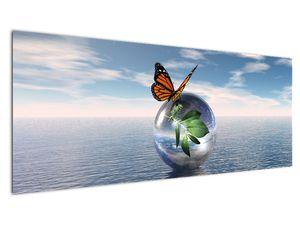 Obraz motýla na skleněné kouli (V021198V14558)