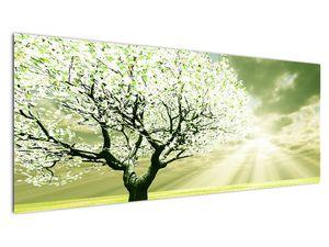 Obraz stromu na lúke (V021282V14558)