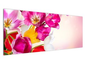 Obraz tulipánov (V021295V14558)