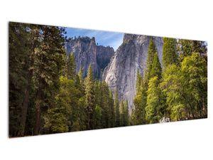 Kép - A Yosemite szikla alatt (V021691V14558)