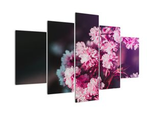 Obraz květů stromu (V020156V150105)
