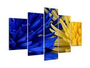 Obraz - detail květů (V020173V150105)