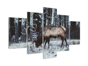 Obraz - jeleň v zime (V020179V150105)