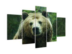 Slika medvjeda (V020185V150105)