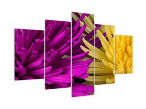Obraz - detail květů (V020201V150105)