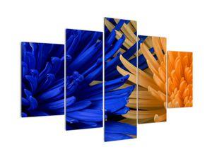 Detailní obraz květů (V020203V150105)