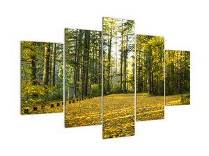 Tablou - pădurea toamna (V020218V150105)