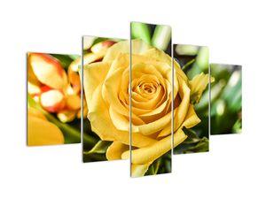 Obraz růže (V020280V150105)