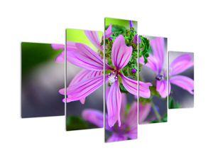 Detailní obraz květiny (V020300V150105)