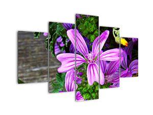 Obraz - luční květiny (V020311V150105)