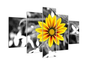 Obraz žluté květiny (V020361V150105)