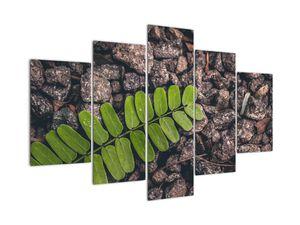Tablou  cu planta verde (V020371V150105)