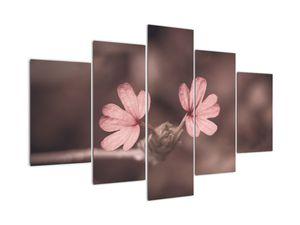Obraz růžového květu (V020375V150105)