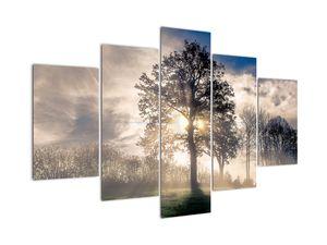 Tablou cu copac în ceață (V020378V150105)