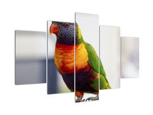 Tablou cu papagal (V020466V150105)